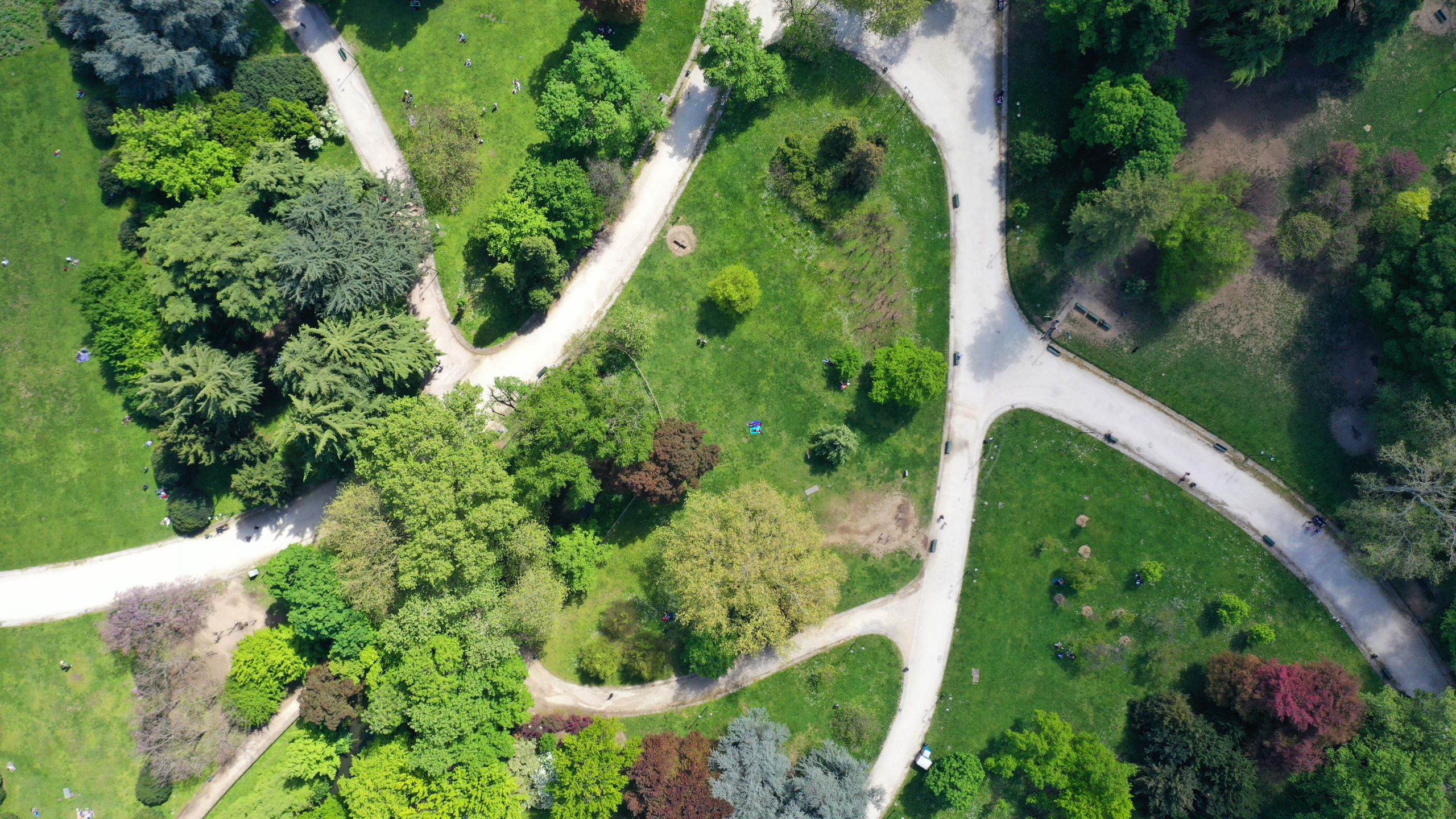 View of a park from above